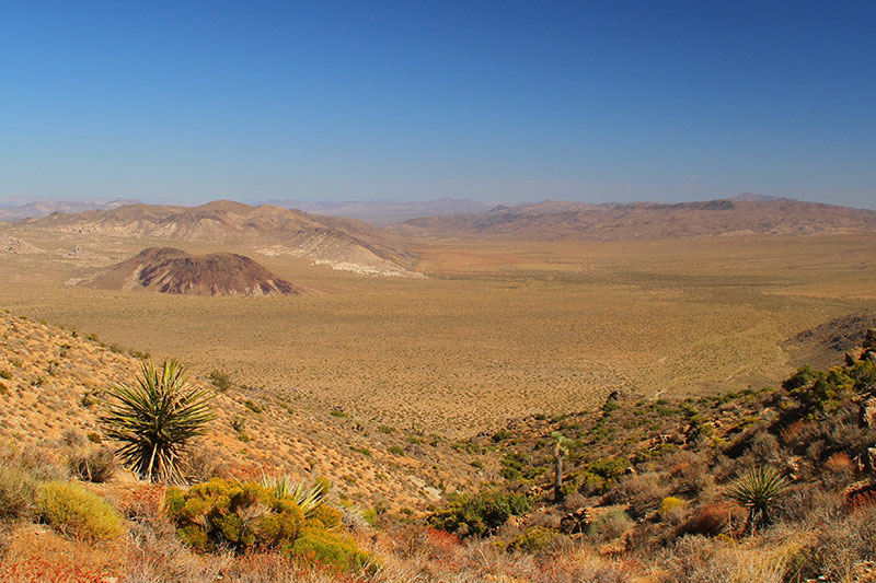 Common scene from southwestern deserts. Sun exposure and dehydration are big killers out here. Evan Tanner encountered this type of terrain as he attempted to walk to his camp when his motorcycle broke down.