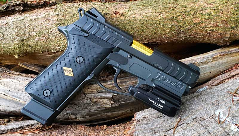 This Regulus Beta has a gold nitride barrel, an extended magazine and a Valkyrie Light mounted on its frame. Novak Adjustable sight is standard.